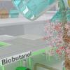 研究人员在重要生物燃料生产方面取得关键进展