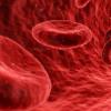 APOE4触发血脑屏障的早期破坏