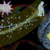 大脑衰老的新生物标志物