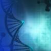 欧盟尚未准备好将基因驱动生物释放到环境中
