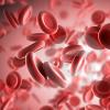 富含抗氧化剂的食物可降低白血病患儿的感染风险