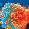 研究表明癌症的起源与分子构成之间的联系