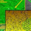 石墨烯增强的碳纤维可能会产生负担得起的 更坚固的汽车材料