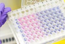 利用使肿瘤细胞对特定药物敏感的信号通路破坏