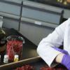 科学家在有害杂草中鉴定出可以解除致命细菌的武装的化学物质
