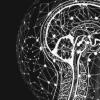 大脑的更新机制可能会产生错误的记忆