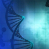 在表观遗传学快速发展的领域中尚未得到充分研究的机制