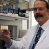 抗疟药显示出有望治疗脑癌