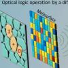 通过衍射神经网络执行光学逻辑运算