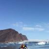 研究人员捕获了很少听到的独角鲸发声