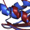 超级计算帮助科学家寻找致命细菌性疾病的疗法