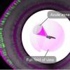 鱼中的单像素视觉帮助科学家了解人类如何发现微小的细节