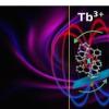 分子磁体中自旋晶格弛豫的各向异性