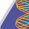 研究首次显示了DNA和RNA的某些结构单元是如何自发形成和共存的