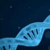 3D面部扫描可以加快诊断患有罕见遗传病的儿童的速度