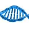 DNA条形码的微生物孢子可以追踪物体农产品的来源