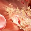 具有高特异性活性因子IX变异的血友病B基因治疗