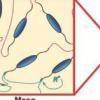 研究人员开发出可模拟生物组织的3D可打印材料