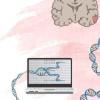创建用于识别脑肿瘤背后基因的新方法