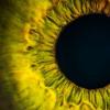 科学家通过新的基因治疗方法从眼部疾病中拯救微型视网膜