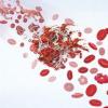 经导管主动脉瓣植入后有无氯吡格雷的抗凝治疗