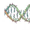 研究将子宫内膜异位症与DNA变化联系起来