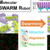 致力于使分子大小的机器人聚在一起执行任务的科学家