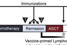 早期临床试验支持基于肿瘤细胞的套细胞淋巴瘤疫苗