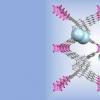 有机框架基材料显示出光催化制氢的巨大潜力