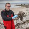 湿巾和卫生用品在爱尔兰水域被发现是微塑性污染物
