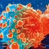 研究人员发现一种可促进肝癌生长和扩散的代谢酶