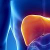 糖的消耗与心脏 腹部周围较大的脂肪沉积有关