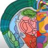 开发了根据分子分布图绘制大脑区域的新方法