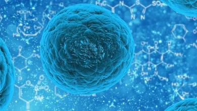 蛋白质的微小变化如何导致细胞烦