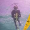 研究表明捕鱼压力对热带和温带珊瑚礁的影响不同