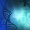 研究许多动物的许多基因是了解人类如何更长寿的关键
