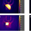 新方法测量3-D物体内的温度
