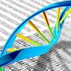 微小的矿物质颗粒是有前途的基因治疗的更好载体