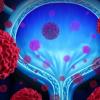 新的扫描仪可以检测膀胱癌的早期迹象 可以挽救数千人的生命