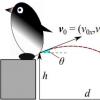 计算推动企鹅粪便所需的真实压力