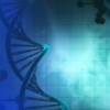DNA存储信息的能力得到提升