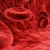 芯片上的微型实验室可在数分钟内检测出血液类型