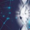 科学家实现了人类X染色体的首次完整组装