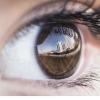 视觉科学家发现为什么人类从字面上看不见