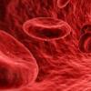 研究揭示了危险的寄生虫如何控制其宿主细胞在体内扩散