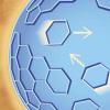 开拓性方法揭示了艾滋病毒的动态结构