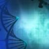 研究发现 慢性炎症会改变结肠细胞的进化