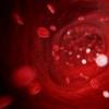 研究人员追踪可防止发炎的代谢酶
