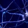 白血病药物显示出治疗小儿脑癌的潜力