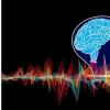 超低功率大脑植入物在灰质噪声中发现有意义的信号